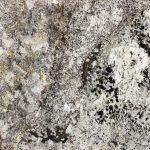 Caymen Granite