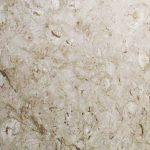 Shell Reef Limestone